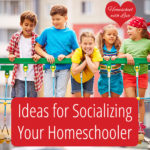 Ideas for Socializing Your Homeschooler