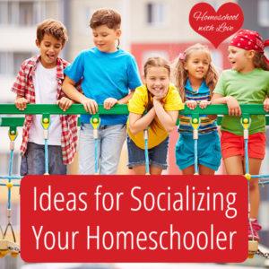 Ideas for Socializing Your Homeschooler