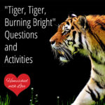 """Tiger, Tiger, Burning Bright"" Questions and Activities"