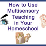 How to Use Multisensory Teaching in Your Homeschool