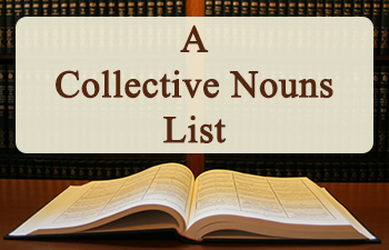 A Collective Nouns List for Your Homeschool