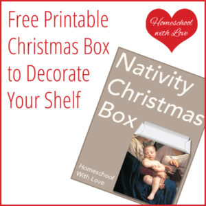 Free Printable Christmas Box to Decorate Your Shelf