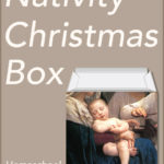 A Free Printable Christmas Box to Decorate Your Shelf
