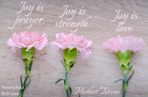 Mother Teresa Quote About What Joy Is