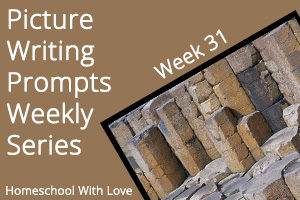 Picture Writing Prompts: Week 31
