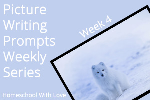 Picture Writing Prompts: Week 4