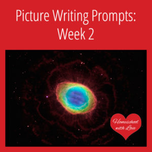 Picture Writing Prompts Week 2