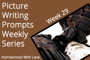 Picture Writing Prompts: Week 29
