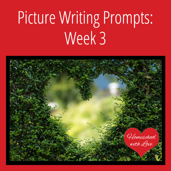 Picture Writing Prompts Week 3