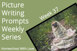 Picture Writing Prompts: Week 37