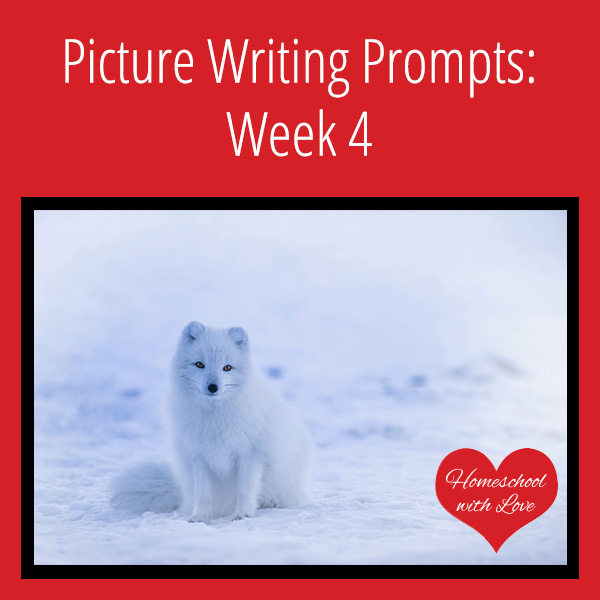 Picture Writing Prompts Week 4