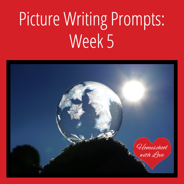 Picture Writing Prompts Week 5