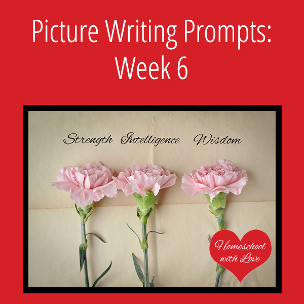 Picture Writing Prompts Week 6