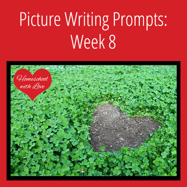 Picture Writing Prompts Week 8