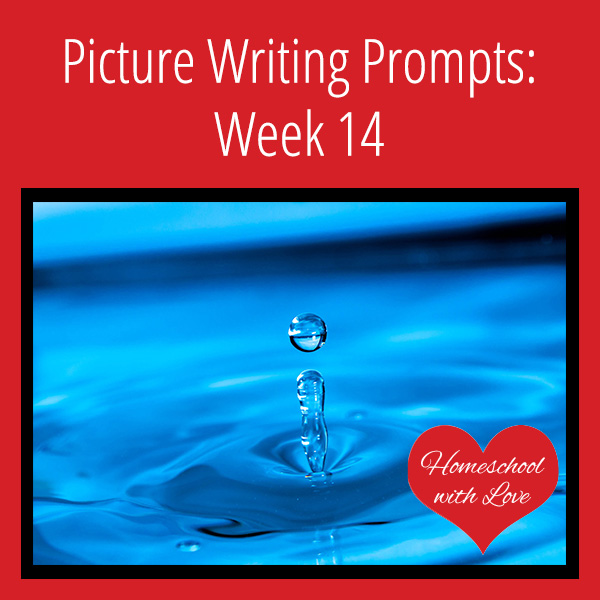 Picture Writing Prompts Week 14