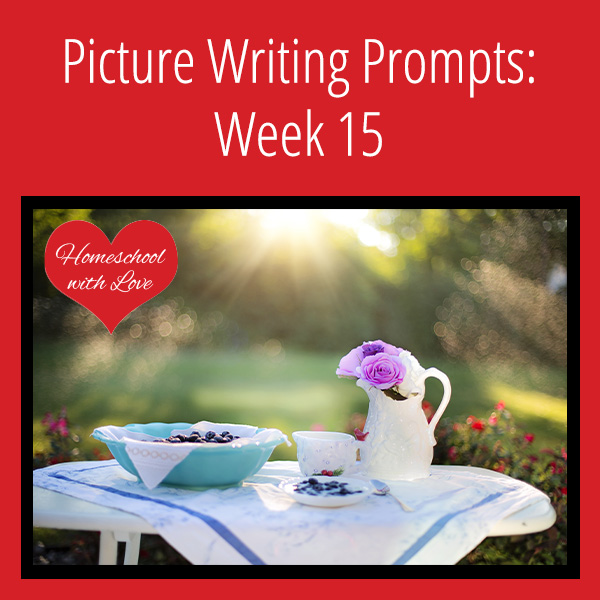 Picture Writing Prompts Week 15