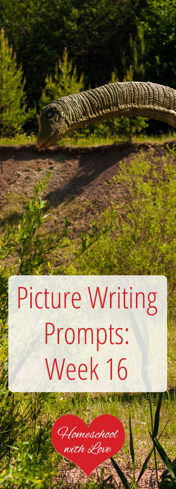 Picture Writing Prompts Week 16