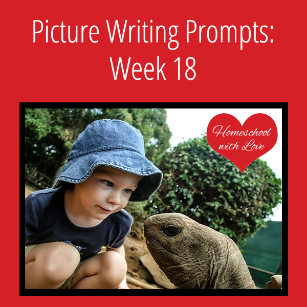 Picture Writing Prompts Week 18