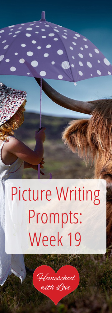 Picture Writing Prompts Week 19
