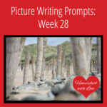 Picture Writing Prompts: Week 28
