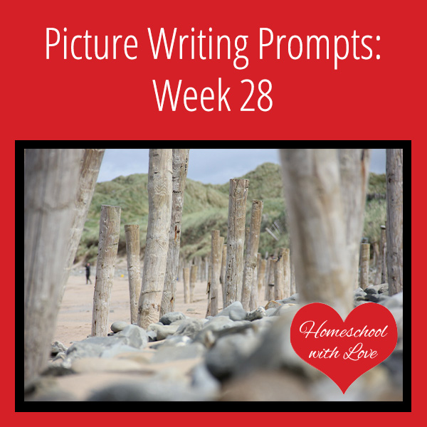 Picture Writing Prompts Week 28