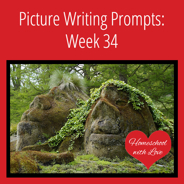 Picture Writing Prompts Week 34