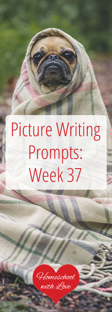 Picture Writing Prompts Week 37