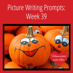 Picture Writing Prompts: Week 39