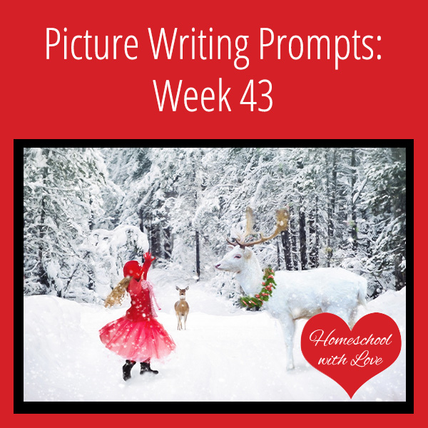 Picture Writing Prompts Week 43