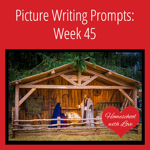Picture Writing Prompts Week 45